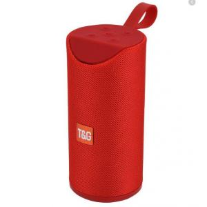Portable Wireless Speaker TG-113A